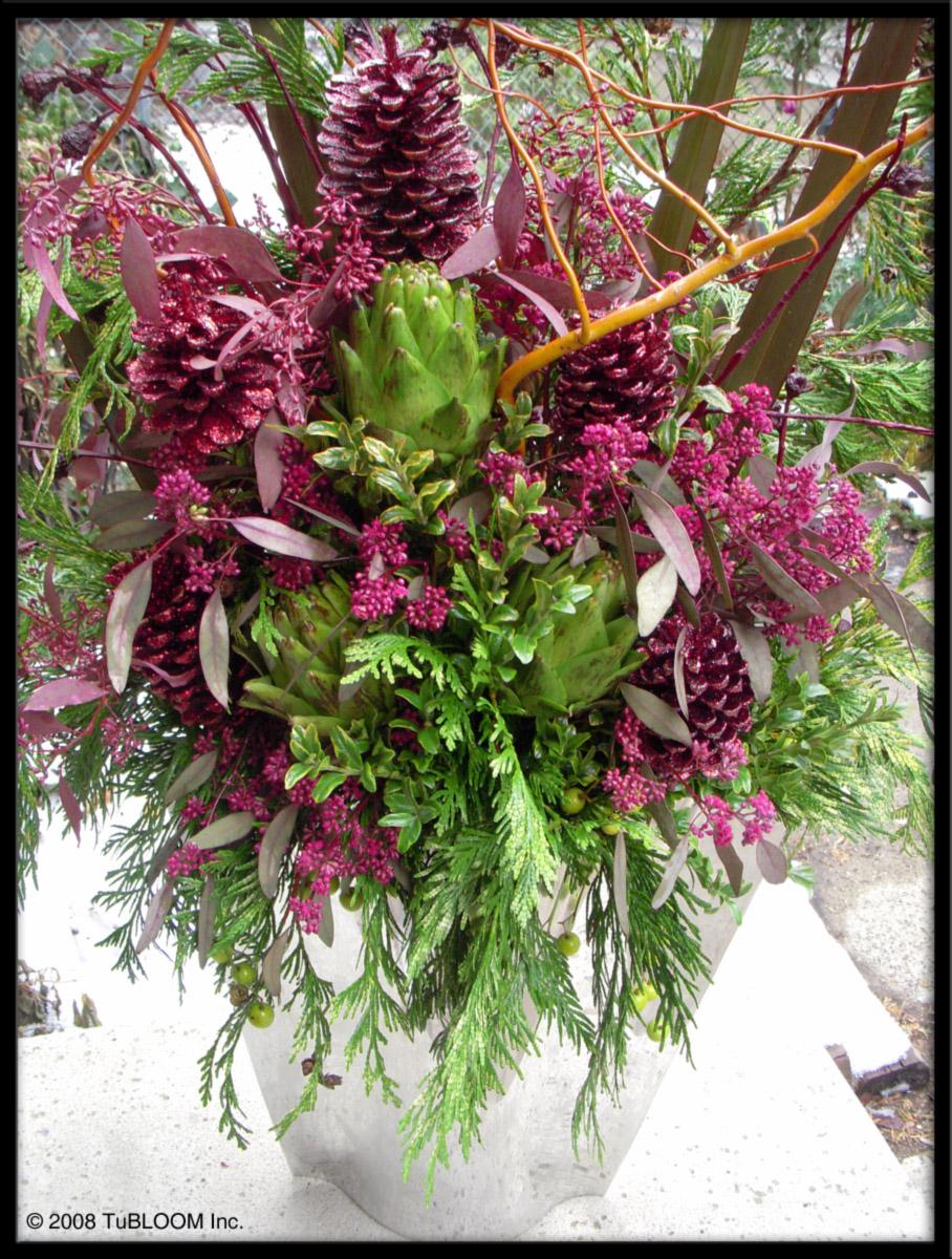 tu bloom winter chicago garden design and landscape services