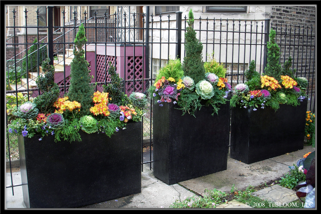 containers for fall Gardening Pinterest