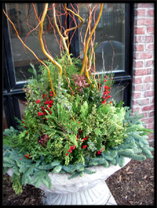 TU BLOOM WINTER CHICAGO GARDEN DESIGN AND LANDSCAPE
