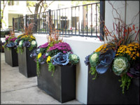 Chicago Garden Landscape Design 015