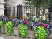 Chicago Garden Landscape Design 011