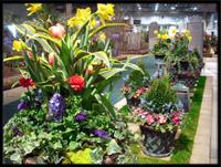spring landscape garden by tu bloom