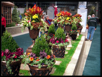 summer chicago commercial landscape features by tu bloom