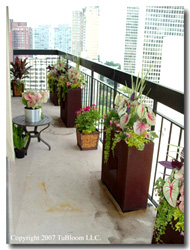 Quality URBAN Balcony GARDENS by Tu BLOOM