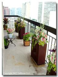 Quality URBAN Balcony GARDENS by Tu BLOOM