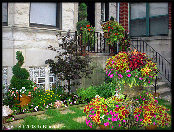 Beautification for English garden design