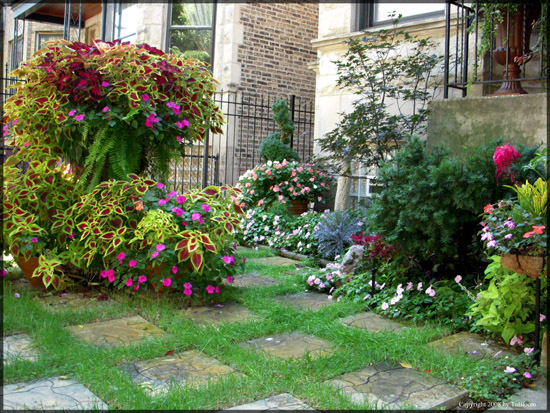 English Garden Design Garden Design Ideas