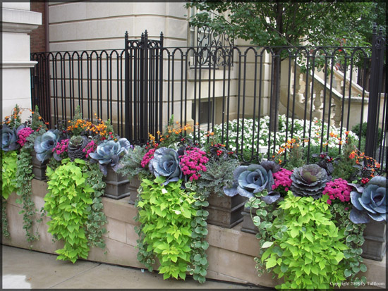 Container Garden Design Property tu bloom garden landscape design services - residential