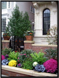 luxury residential garden landscape services by tu bloom