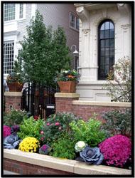 Luxury Parkway Garden Landscape Design