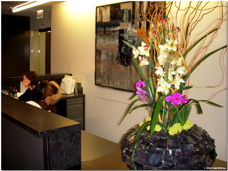 Orchids Garden Design decorating with orchids and a great trick for growing them Interior Botanical Plantscape Orchid Designs By Tu Bloom Garden Landscape Designs Inc