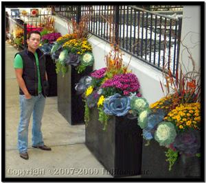 commercial garden landscape designs by tu bloom designs inc.